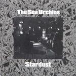 seaurchins_stardust.jpg